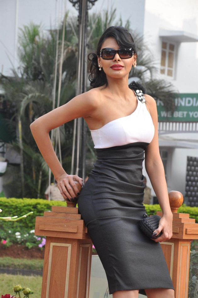 Download Hot Celebrities at Signature Premium Derby 2013 hd photo's