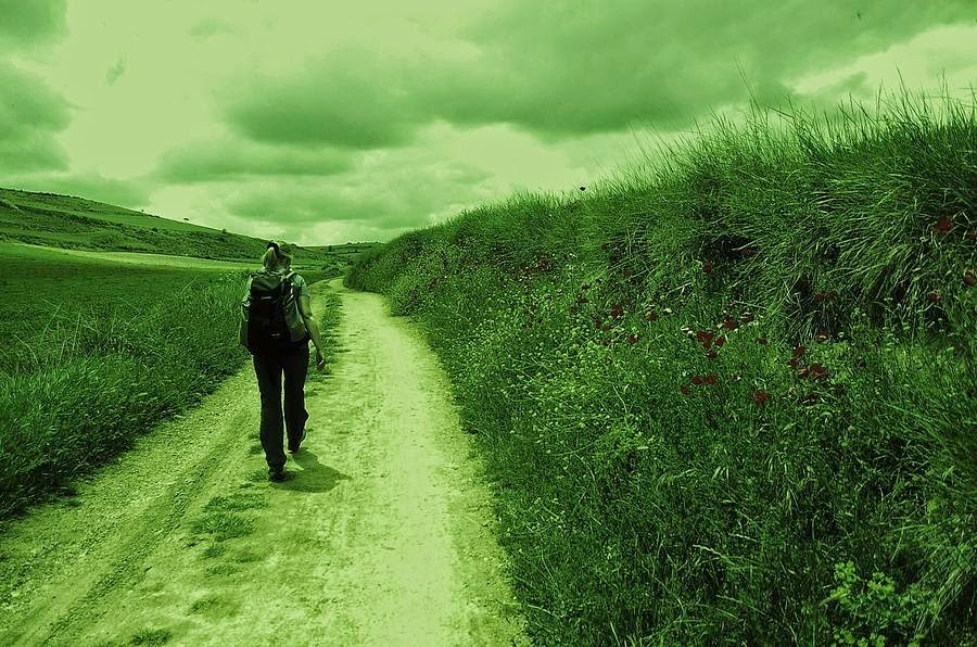 Journey of Life