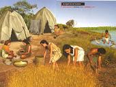 Neolítico e o início da agricultura