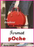 http://leschapitresdeso.blogspot.fr/p/acheter-le-roman.html