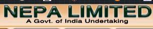 NEPA Limited Logo