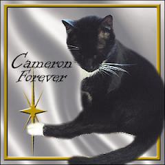 Cameron  RIP