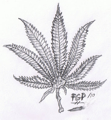 Cool Weed Leaf Drawings Cannabis leaf drawing how to