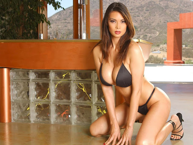 Tera Patrick sexy in lingerie