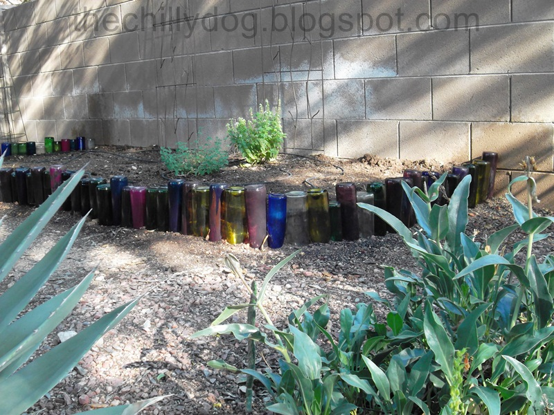 The Chilly Dog: Wine Bottle Garden