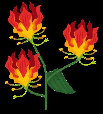 グロリオサのイラスト(花)