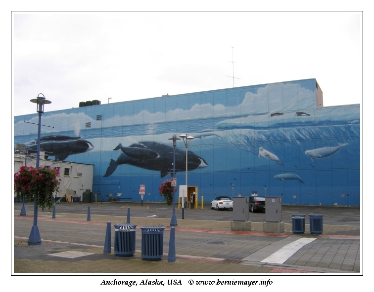 Whale Wall