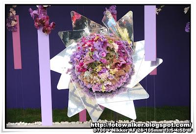 花展2013 日