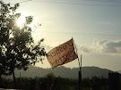aktuelle Berichte der IAK-Reise in Honduras