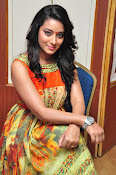 Bhanu Sri Mounam Movie Launch-thumbnail-9