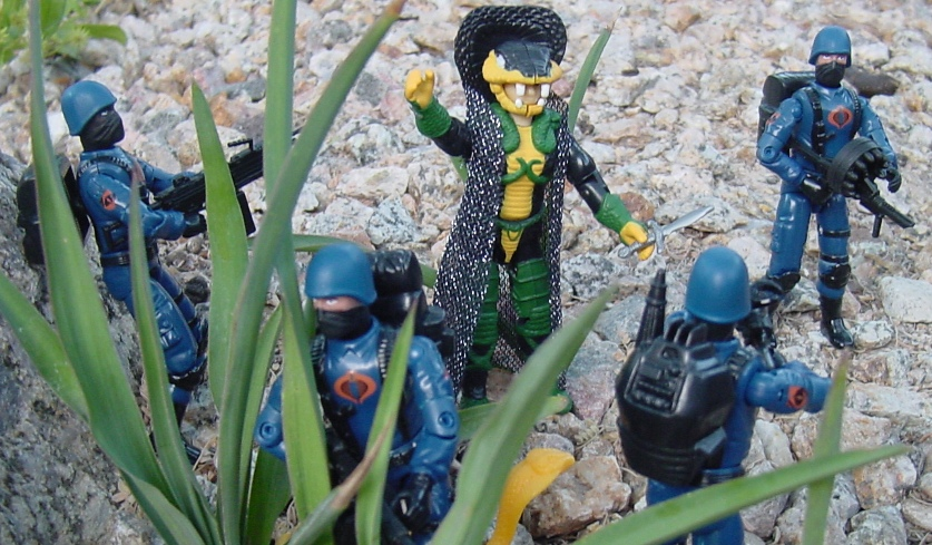 2002 Serpentor, ARAHC, Internet Exclusive, 2004 Cobra Trooper