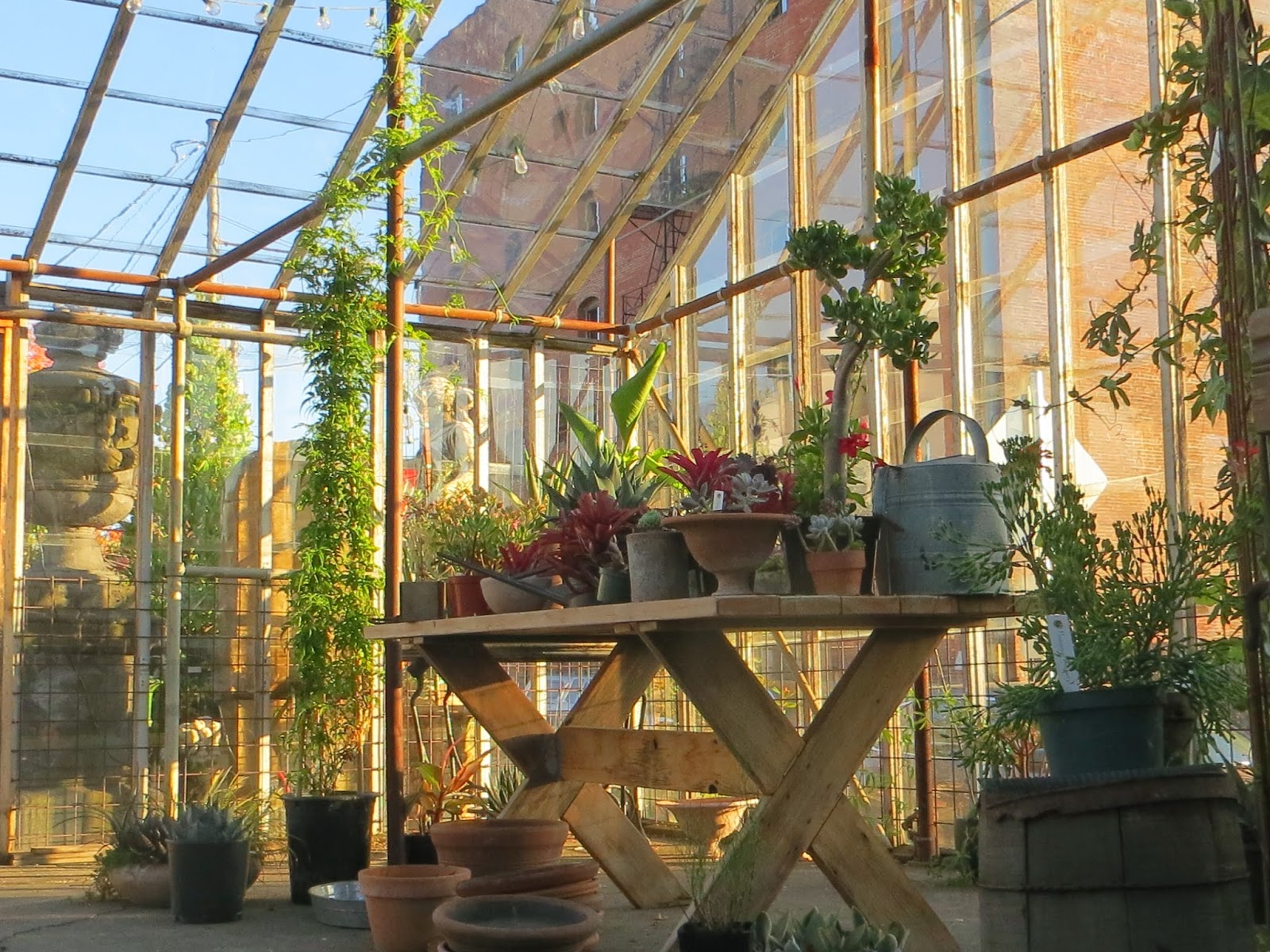Garden Blogger\'s Fling, Portland: Pomarius Nursery