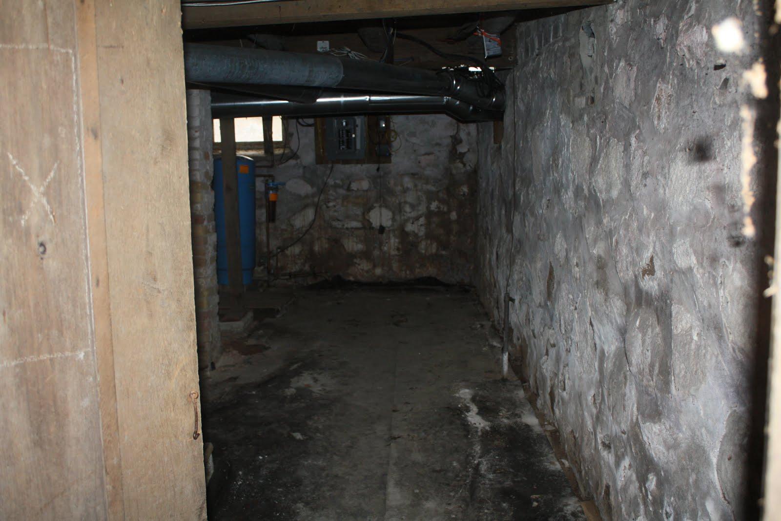 scary basement scary basement photos