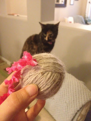 Make a cat toy
