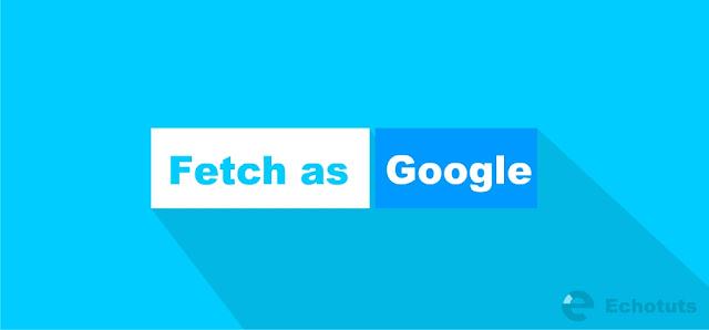 Cara Menggunakan Fetch as Google di Google Webmaster Tool - echotuts