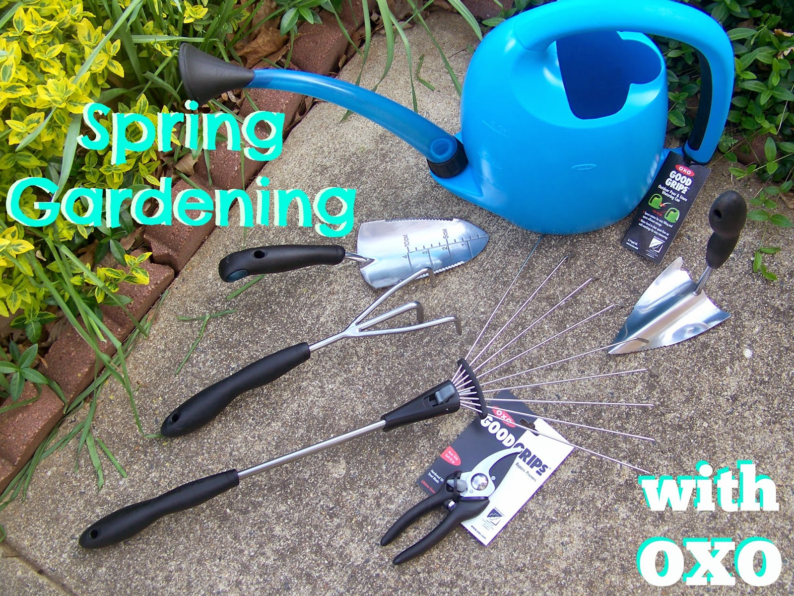 Kitchen simmer spring gardening with oxo gardening tools for Gardening tools philippines