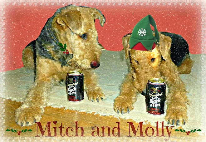 Mitch and Molly