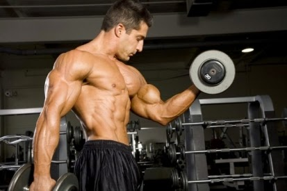 Bicep Workout routines That Allow you to Create Muscle mass
