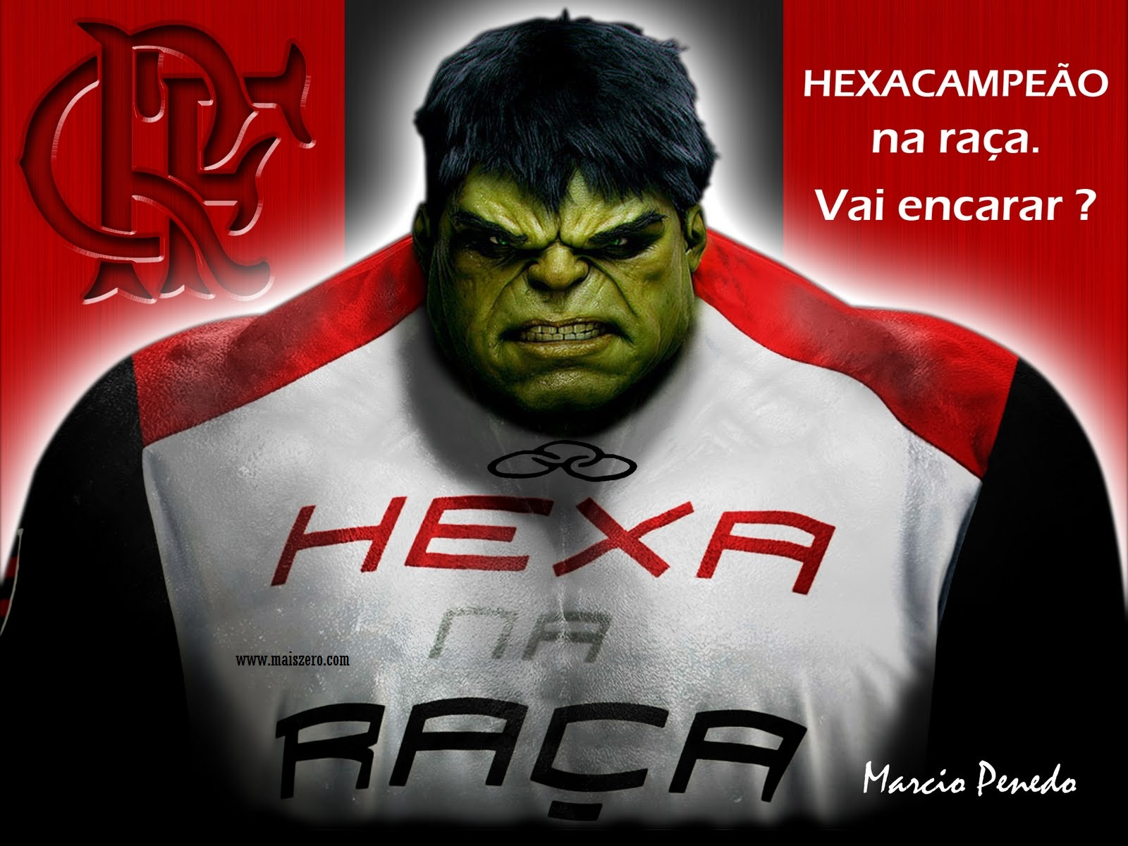 trololo blogg: Wallpaper Flamengo