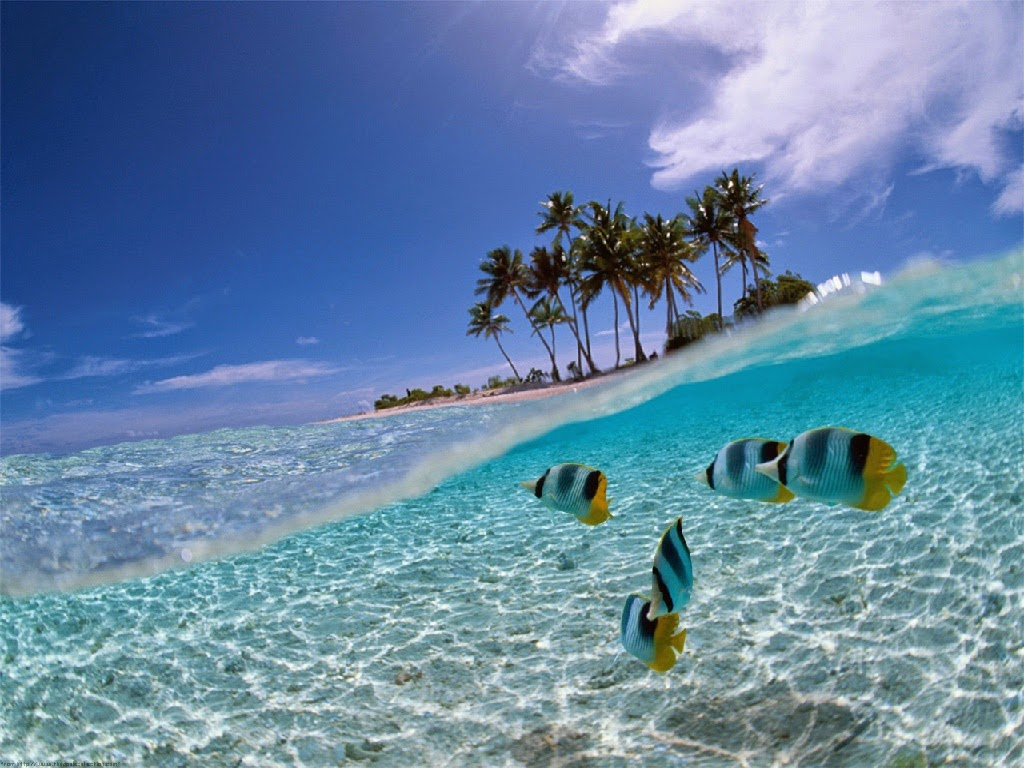 Keindahan Pulau Siladen Yang Mempesona Mata