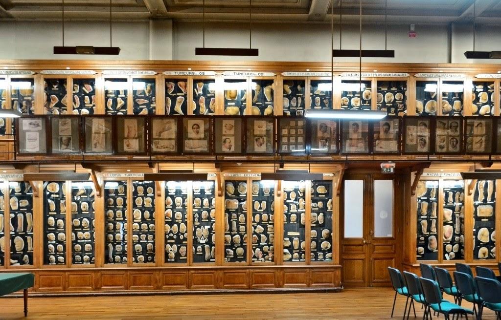 Un dermatólogo en el museo: El museo de cera del Hospital Saint ...