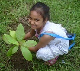 Young children love to plant trees. Gift a young friend or family member a fruit tree today.