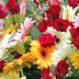 Record rain in Colombia threatens flower exports