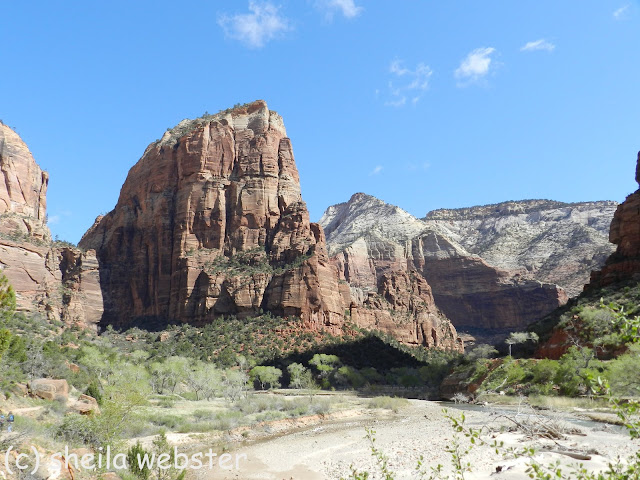 The mountain Angel's Landing stands tall beside the Virgin River.