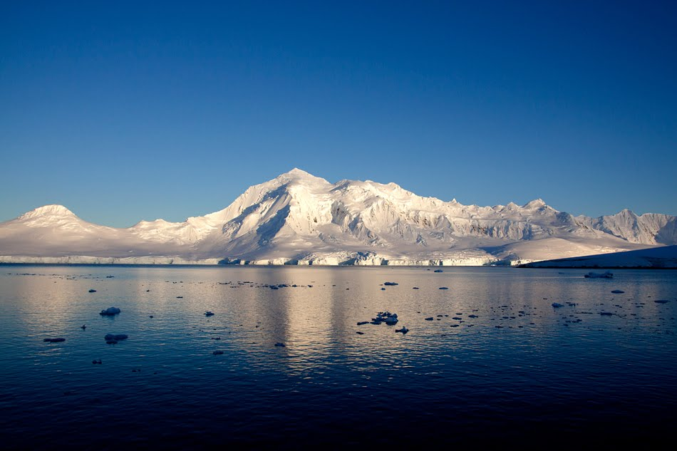 Lost in birding port lockroy antarctica 12 march for Port lockroy