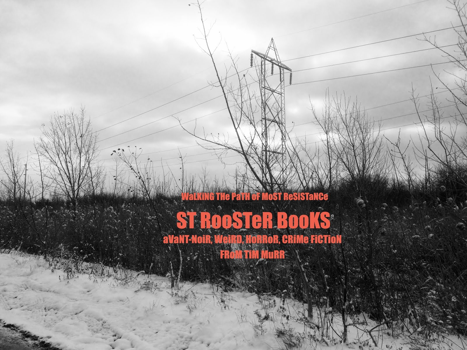 From St Rooster Books