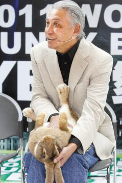 兔子博覽會