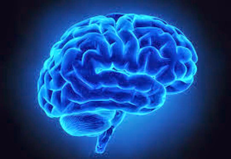 Brains of Retired NFL Players Who Suffered Concussions