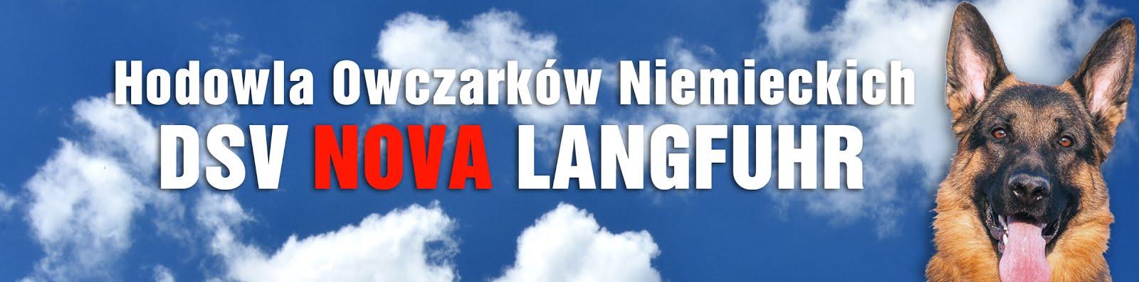 DSV Nova Langfuhr