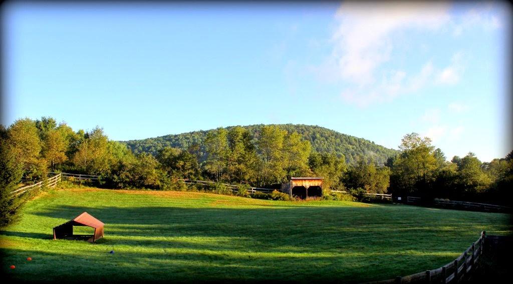 Glen Highland Farm