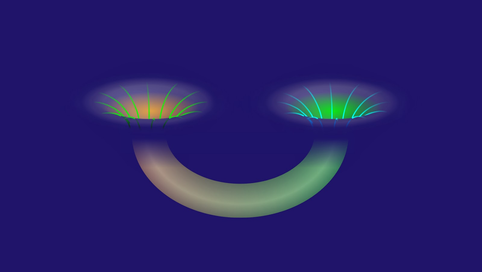 Black holes are portals to other universes according to