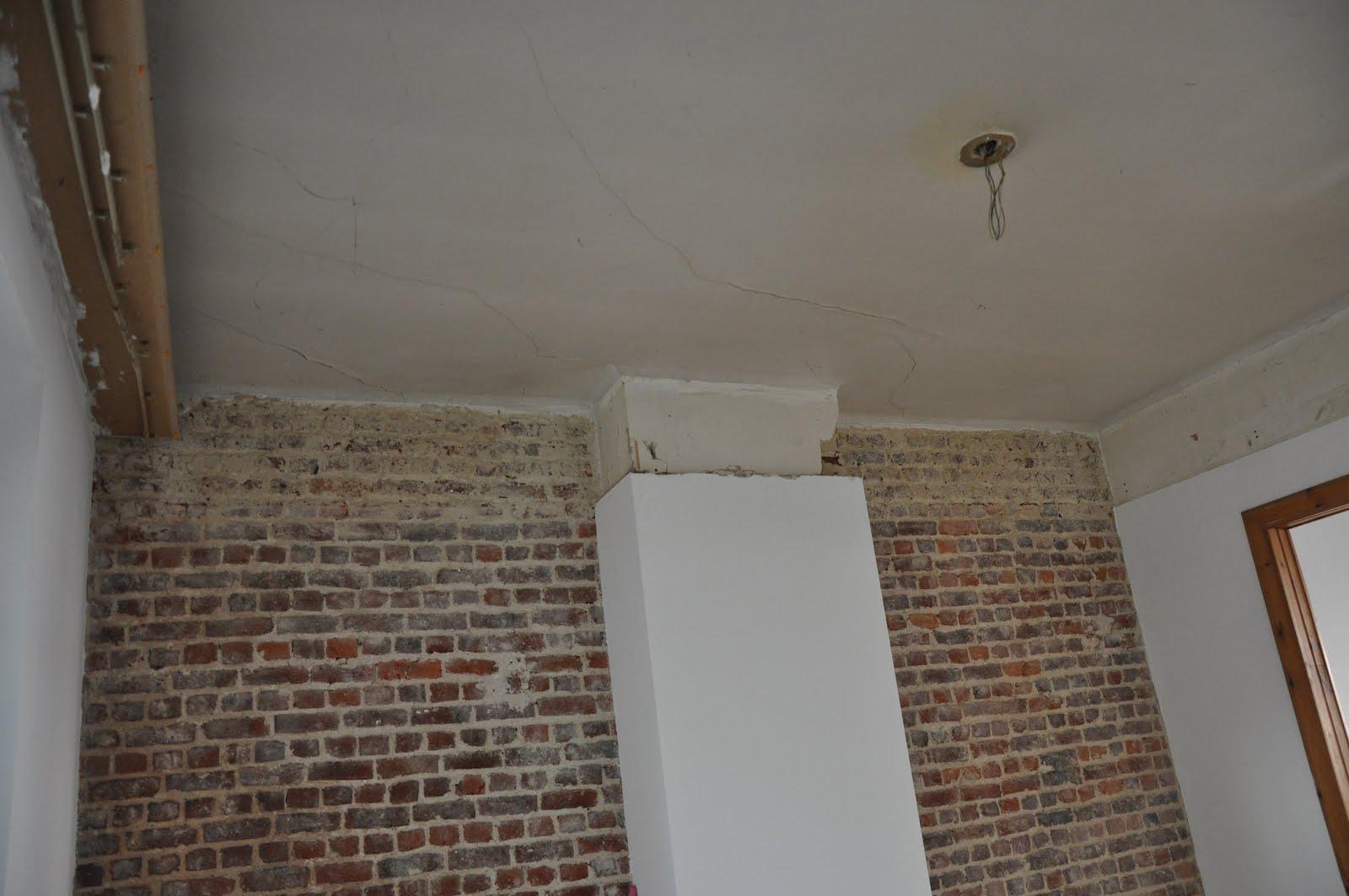 Maison r novation motivation r novation du salon et de for Comment choisir un ventilateur de plafond