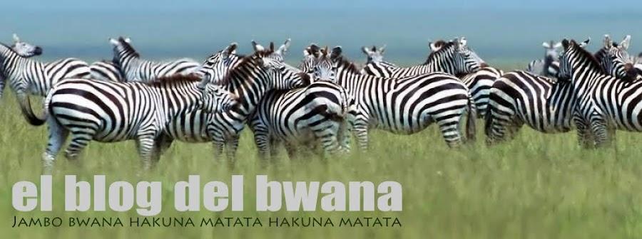 El blog del Bwana