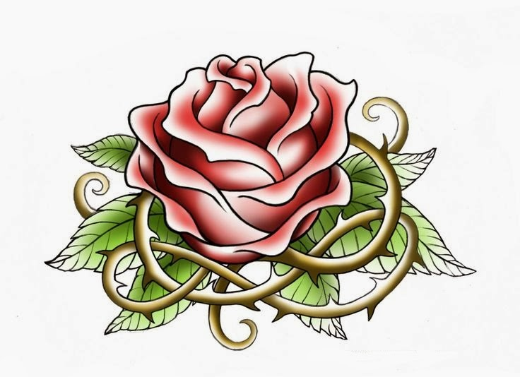 Rose with spines tattoo stencil