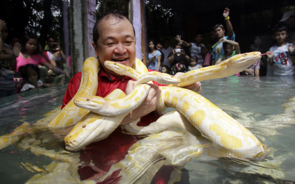 Ọmọ O 243 Dua Meet The Chinese Man That Lives With Snakes In