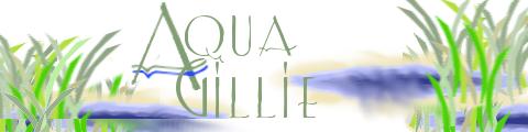 Aqua Gillie