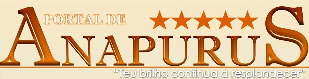 Portal de Anapurus