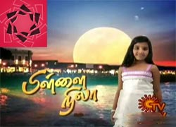 Pillai Nila 19-06-2013 Episode 290 full hd youtube video | Sun Tv Shows Pillai Nila Serial 19th June 2013 at srivideo