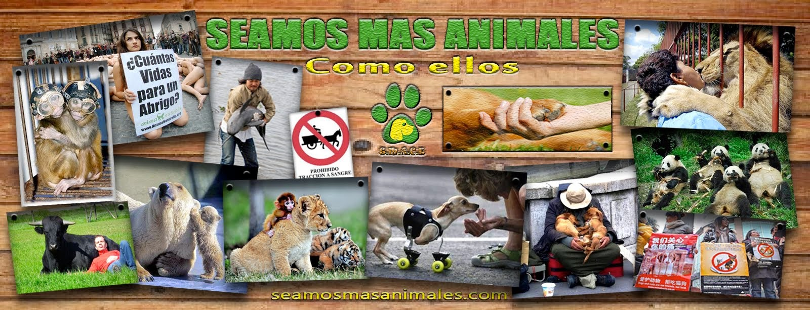 Seamos Más Animales... Como Ellos