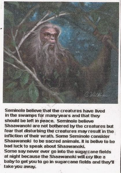 The Florida Skunk Ape
