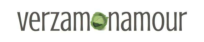 Ricette di cucina - Le ricette di Verzamonamour.com
