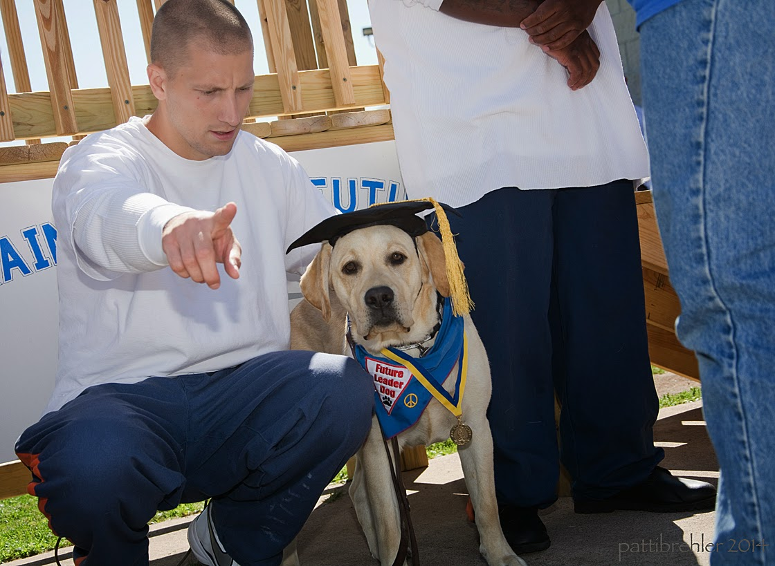 A man wearing blue prison pants and a long-sleeved white t-shirt is squatting in front of a wooden staircase and pointing at the camera with his right hand. He is looking down at a young yellow lab that is sitting on his left side. The lab is wearing a black graduation hat with a yellow tassel, the blue Future Leader Dog bandana and a medal around his neck. There are legs of two other men standing to the right.