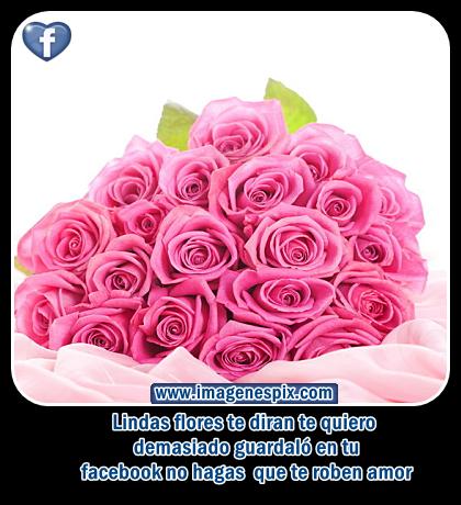 Flores con Bonitos Mensajes de Cumpleaños ツ Imagenes  - Imagenes Bonitas De Flores Para El Facebook