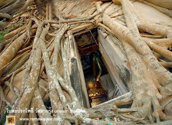 อุโบสถ์ปรกโพธิ์ วัดบางกุ้ง UNSEEN THAILAN จ.สมุทรสงคราม
