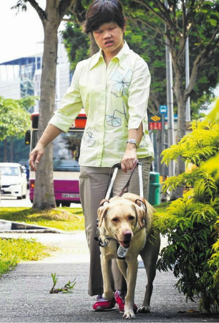 HER EYES: Guide dog Nice with its owner, Miss Lim.
