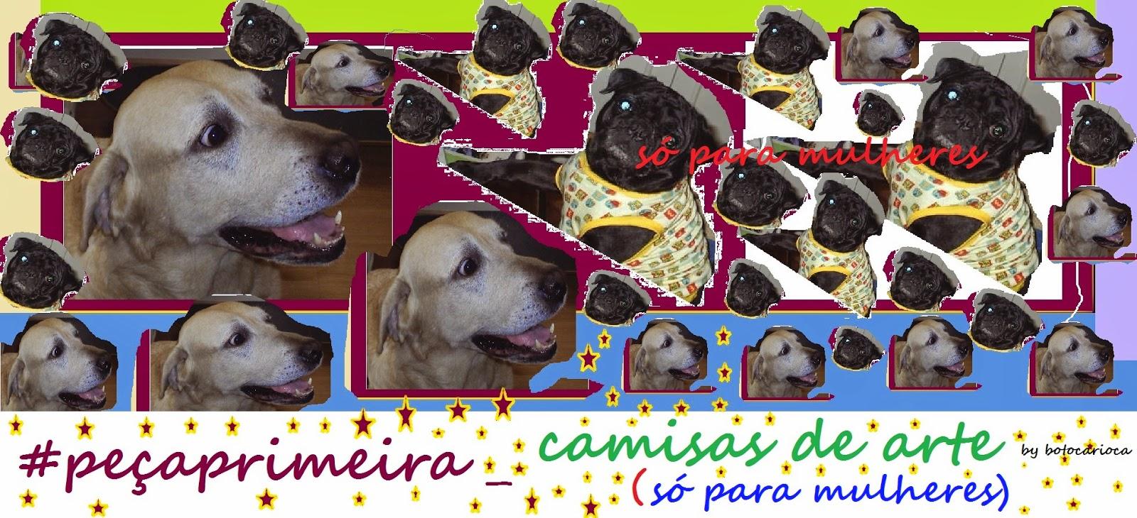 http://botocarioca.blogspot.com.br/search/label/pe%C3%A7aprimeira